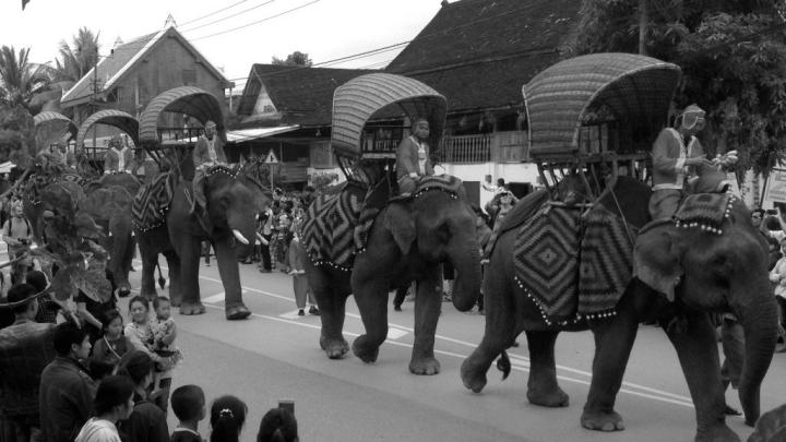 La Caravane des éléphants auLaos