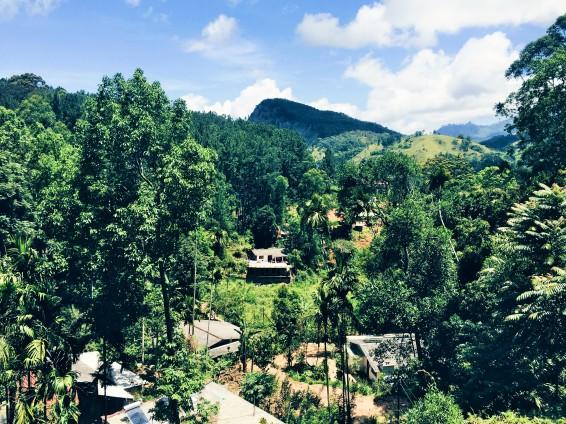 La vue depuis notre terrasse