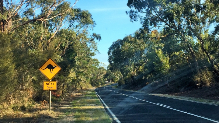 Comment préparer son road trip enAustralie
