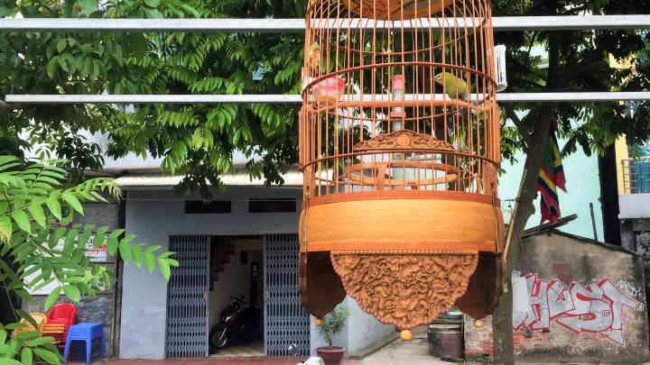 Canh Hoach, le village des cages àoiseaux
