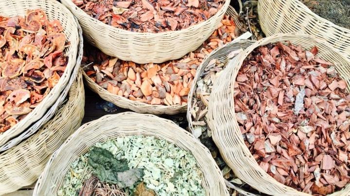 La médecine traditionnellevietnamienne